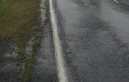 Wet Asphalt Roadway Friction