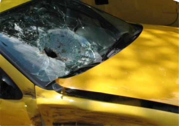 Windshield Exam During Accident Investigation